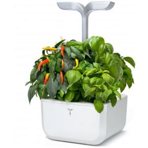 Домашна градина EXKY® SMART GARDEN - цвят бял/инокс