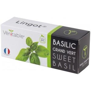VERITABLE Lingot® Sweet Basil Organic - Сладък Босилек