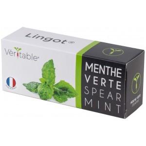 VERITABLE Lingot® Spearmint - Сладка Мента